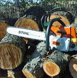 вывоз деревьев
